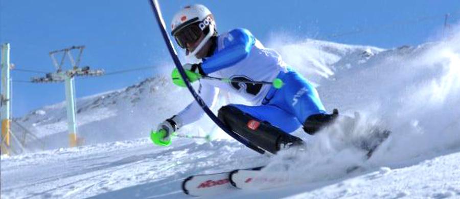Αλπικό Σκι